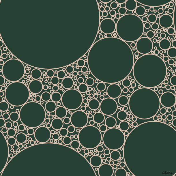 bubbles, circles, sponge, big, medium, small, 3 pixel line width, Just Right and English Holly circles bubbles sponge soap seamless tileable