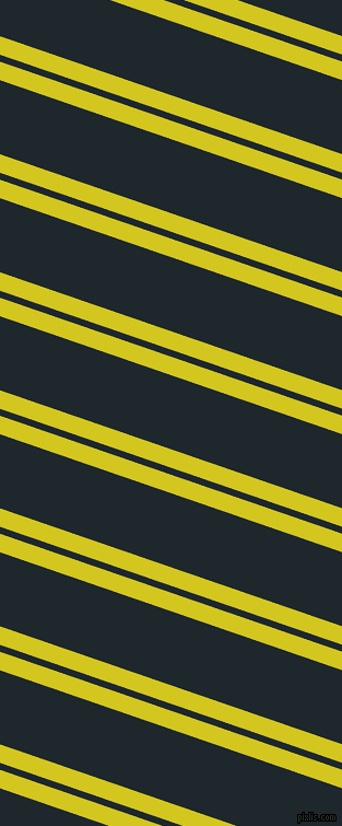 161 degree angles dual stripes line, 16 pixel line width, 6 and 64 pixels line spacing, dual two line striped seamless tileable