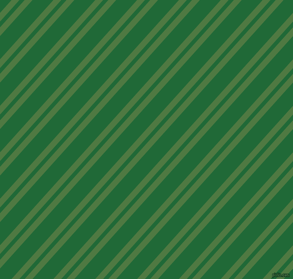 48 degree angles dual stripes lines, 12 pixel lines width, 8 and 32 pixels line spacing, Fern Green and Camarone dual two line striped seamless tileable