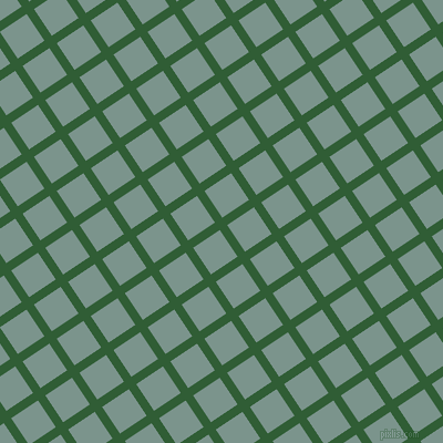 34/124 degree angle diagonal checkered chequered lines, 8 pixel line width, 29 pixel square size, Parsley and Granny Smith plaid checkered seamless tileable